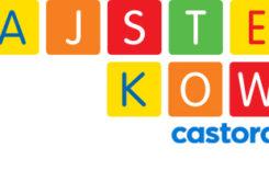 Więcej o: Castorama