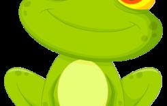 Więcej o: Dzień z życia Żabek