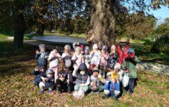 Więcej o: Biedronki zbierają dary jesieni w parku